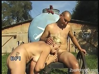 Horse and Girl zoophilia video