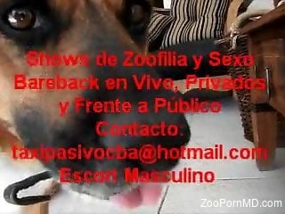 Special zoophilia homemade shows with real persons