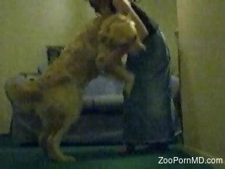 Furry dog ass fucks naked woman on live cam