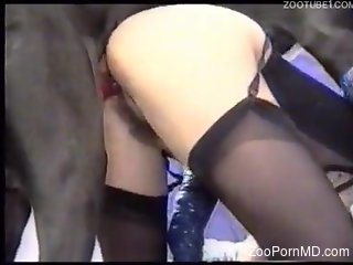 Hard sex for a blonde woman in scenes of dog zoophilia