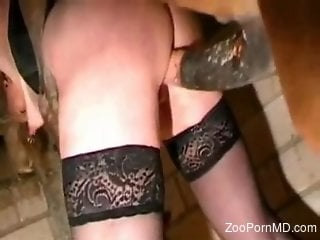 Mature in black stockings loves a good hard horse dick