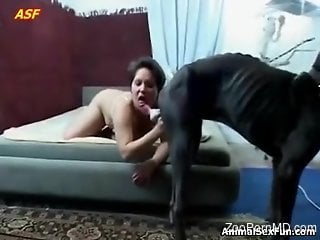 Short-haired beauty in lingerie worships a dog's cock